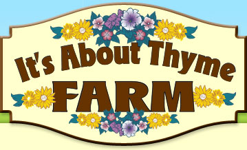 It's About Thyme Farm - Olmstedville, NY